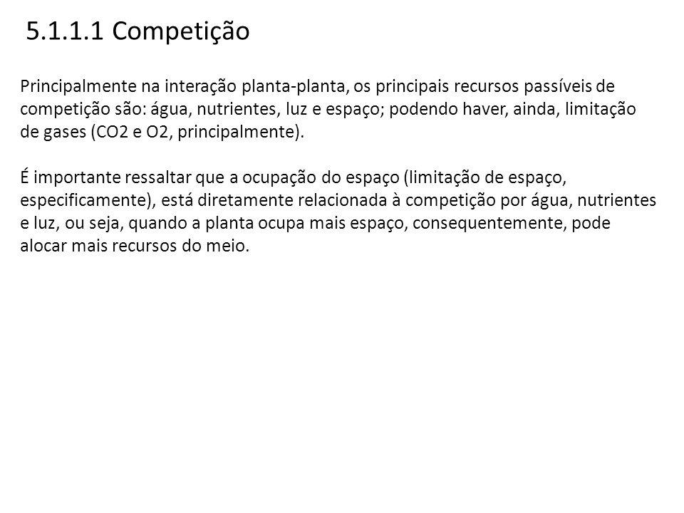 5.1.1.1 Competição Principalmente na interação planta-planta, os principais recursos passíveis de competição são: água, nutrientes, luz e espaço; pode