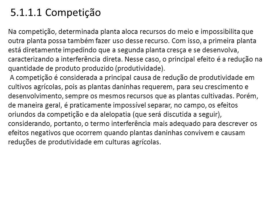 5.1.1.1 Competição Na competição, determinada planta aloca recursos do meio e impossibilita que outra planta possa também fazer uso desse recurso. Com