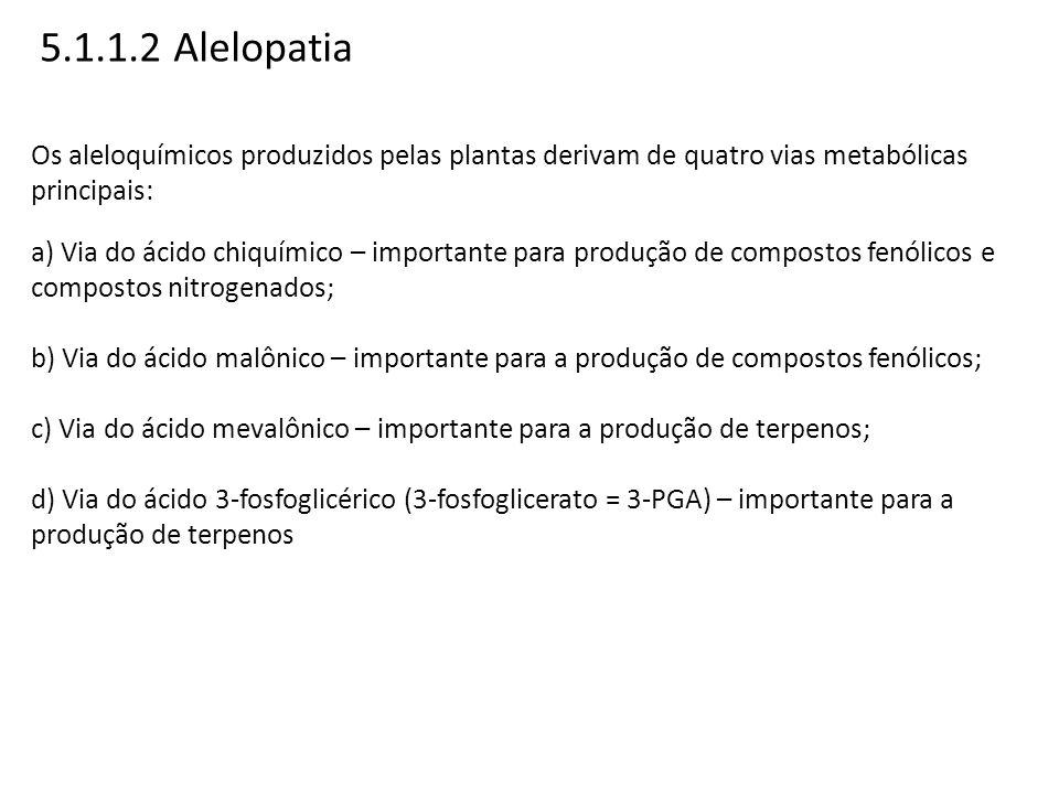Os aleloquímicos produzidos pelas plantas derivam de quatro vias metabólicas principais: a) Via do ácido chiquímico – importante para produção de comp