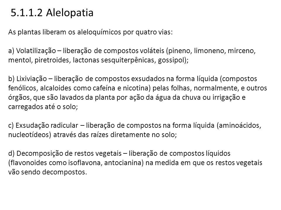 5.1.1.2 Alelopatia As plantas liberam os aleloquímicos por quatro vias: a) Volatilização – liberação de compostos voláteis (pineno, limoneno, mirceno,