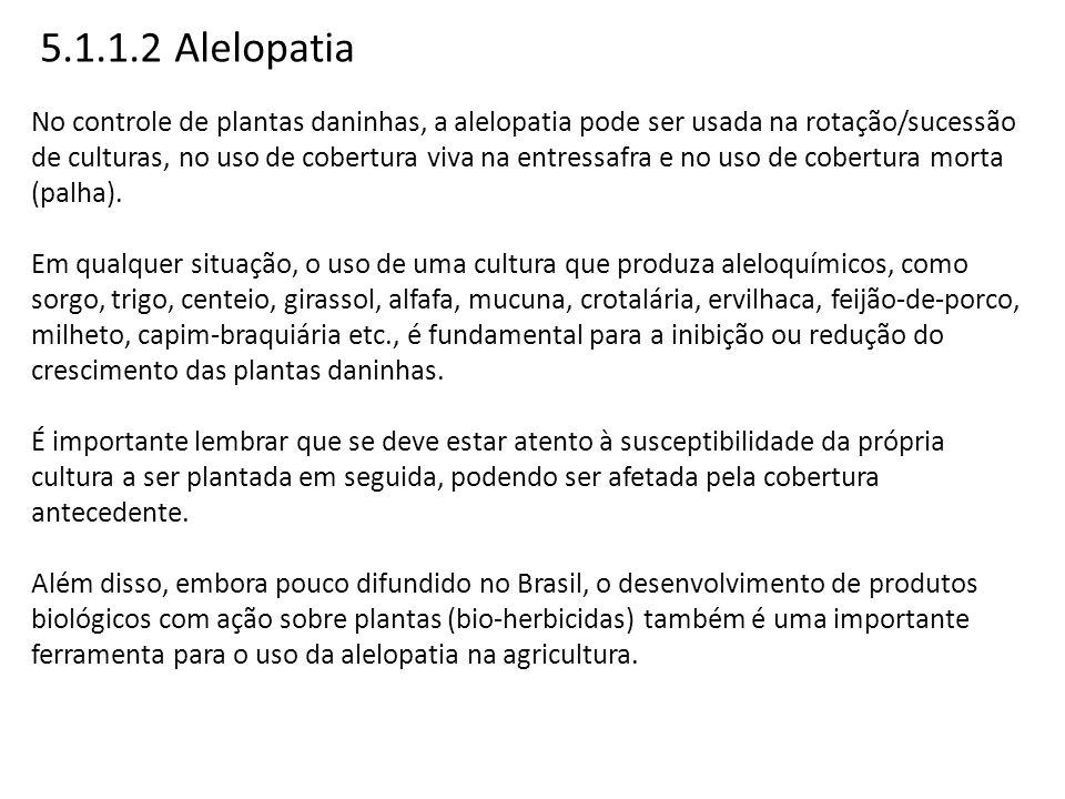 5.1.1.2 Alelopatia No controle de plantas daninhas, a alelopatia pode ser usada na rotação/sucessão de culturas, no uso de cobertura viva na entressaf