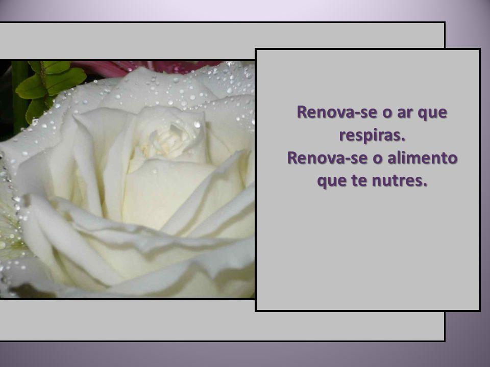 Na própria química do corpo em que temporariamente resides, a renovação há de ser incessante.