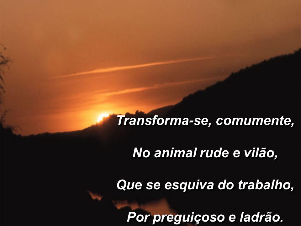 Transforma-se, comumente, No animal rude e vilão, Que se esquiva do trabalho, Por preguiçoso e ladrão.
