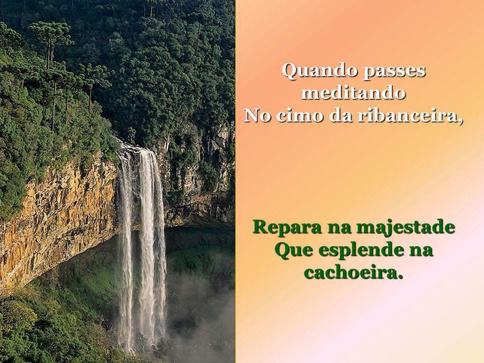 Cartilha da Natureza A cachoeira