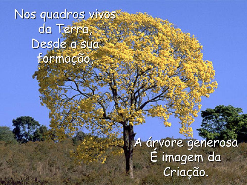 Nos quadros vivos da Terra, Desde a sua formação, A árvore generosa É imagem da Criação.