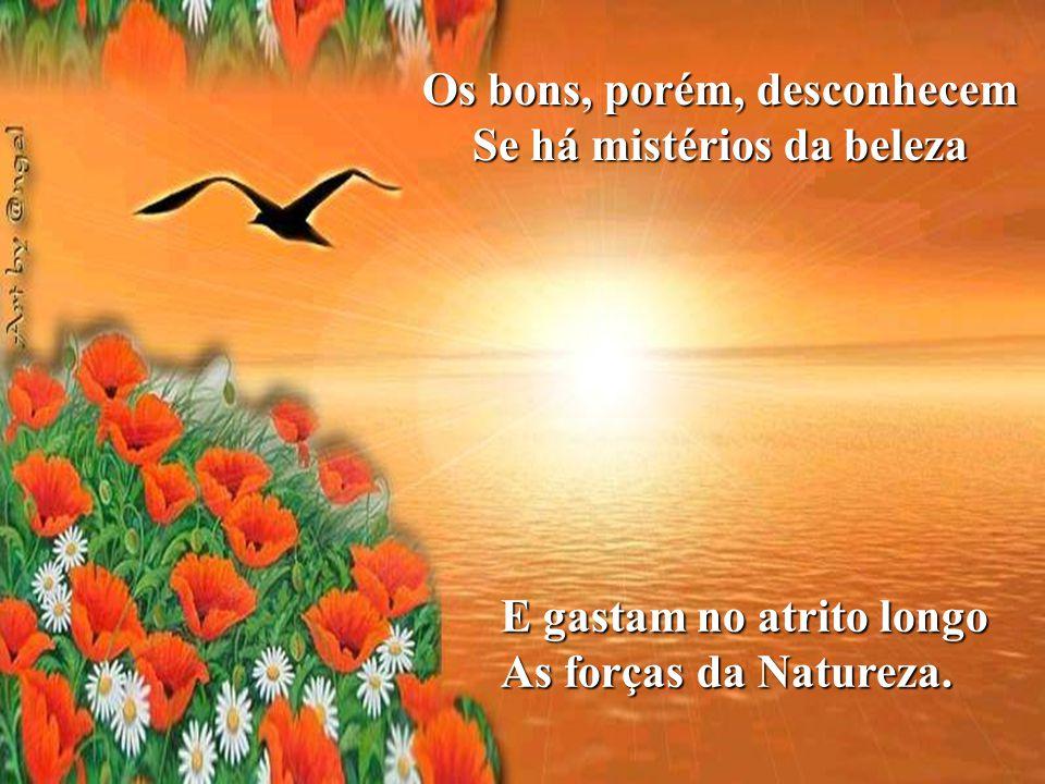 Em tudo palpita o belo Na sublime transcendência, Das dádivas generosas Na Divina Providência.