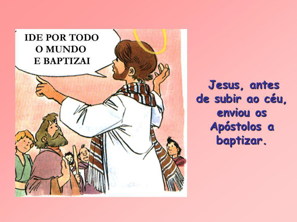 A importância do Baptismo Jesus quis ser baptizado no rio Jordão por João Baptista. Jesus quis ser baptizado no rio Jordão por João Baptista.