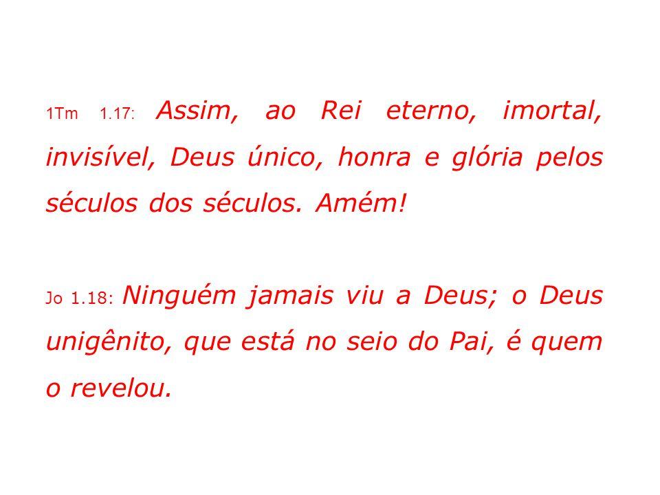 1Tm 1.17: Assim, ao Rei eterno, imortal, invisível, Deus único, honra e glória pelos séculos dos séculos. Amém! Jo 1.18: Ninguém jamais viu a Deus; o