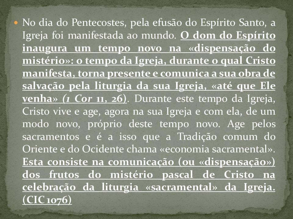 No dia do Pentecostes, pela efusão do Espírito Santo, a Igreja foi manifestada ao mundo.