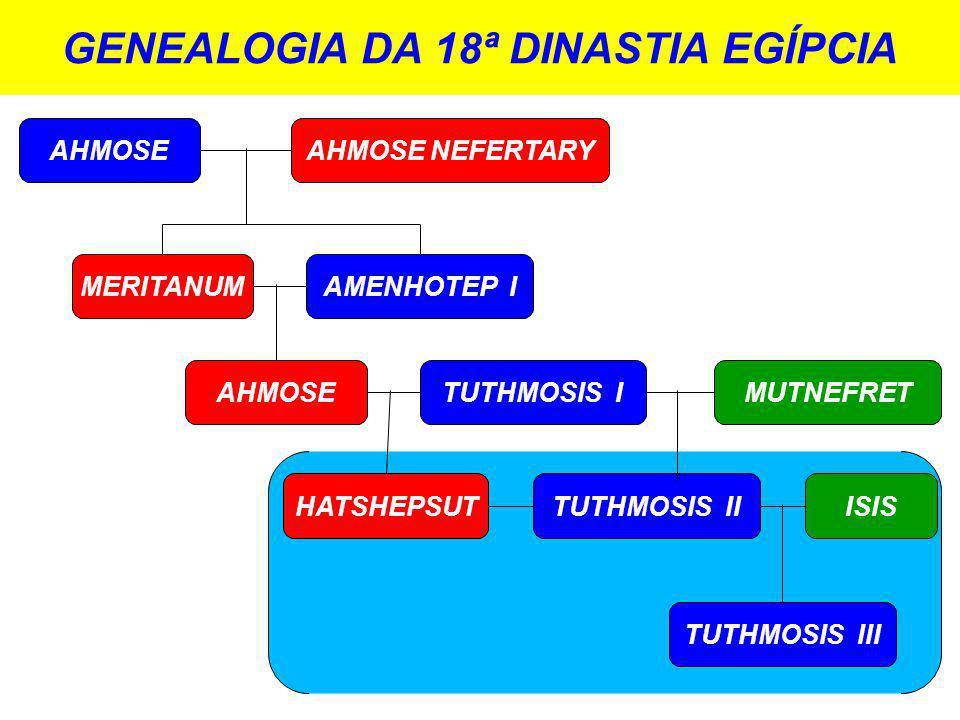 GENEALOGIA DA 18ª DINASTIA EGÍPCIA AHMOSE MERITANUM AHMOSE HATSHEPSUT AMENHOTEP I TUTHMOSIS I TUTHMOSIS II AHMOSE NEFERTARY MUTNEFRET ISIS TUTHMOSIS III