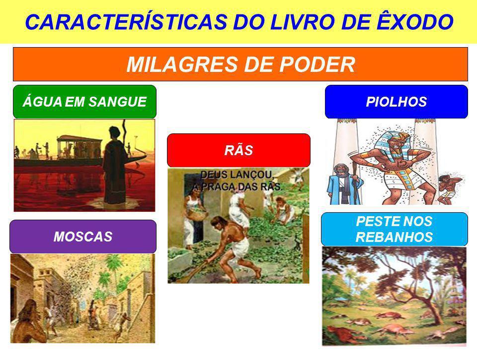 CARACTERÍSTICAS DO LIVRO DE ÊXODO MILAGRES DE PODER ÁGUA EM SANGUE RÃS PIOLHOS MOSCAS PESTE NOS REBANHOS