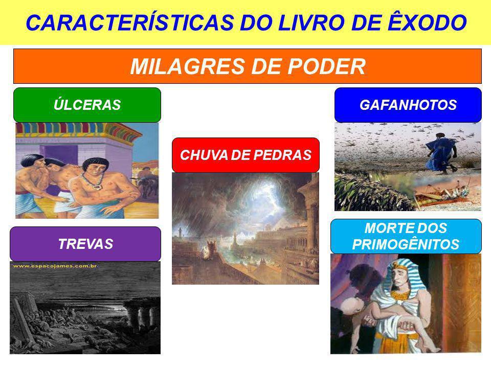 CARACTERÍSTICAS DO LIVRO DE ÊXODO MILAGRES DE PODER ÚLCERAS CHUVA DE PEDRAS GAFANHOTOS TREVAS MORTE DOS PRIMOGÊNITOS