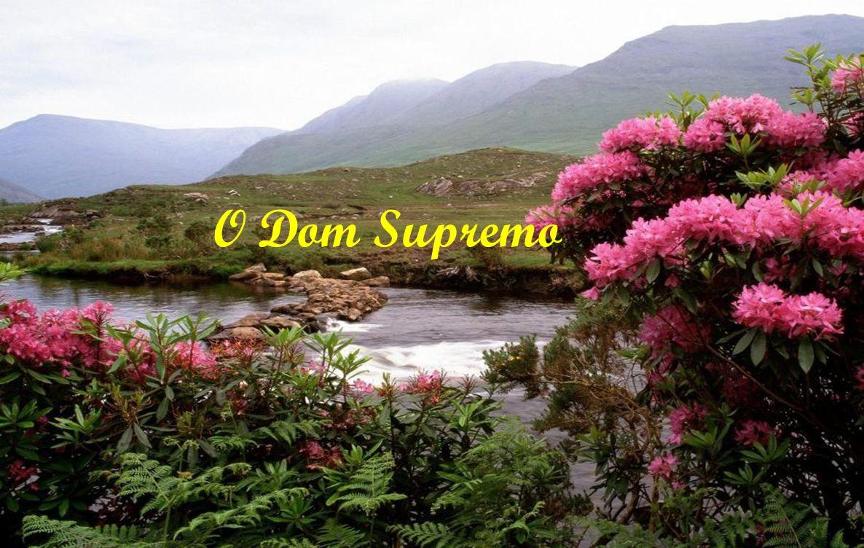 Vive em vão o homem que não leva a cabo a tarefa que lhe foi assinalada na vida A Voz do Silêncio Antigo texto budista