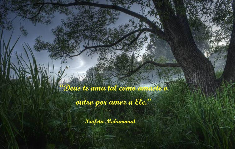 Não menosprezes qualquer ato de bondade, inclusive o de receberes o teu próximo com um semblante alegre Profeta Mohammad