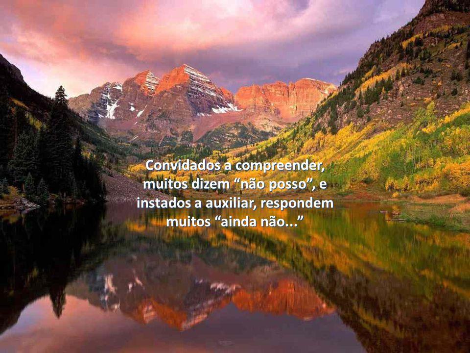 Convidados a compreender, muitos dizem não posso, e instados a auxiliar, respondem muitos ainda não...