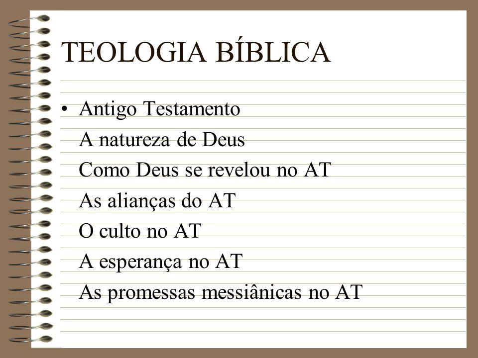 TEOLOGIA BÍBLICA Antigo Testamento A natureza de Deus Como Deus se revelou no AT As alianças do AT O culto no AT A esperança no AT As promessas messiâ