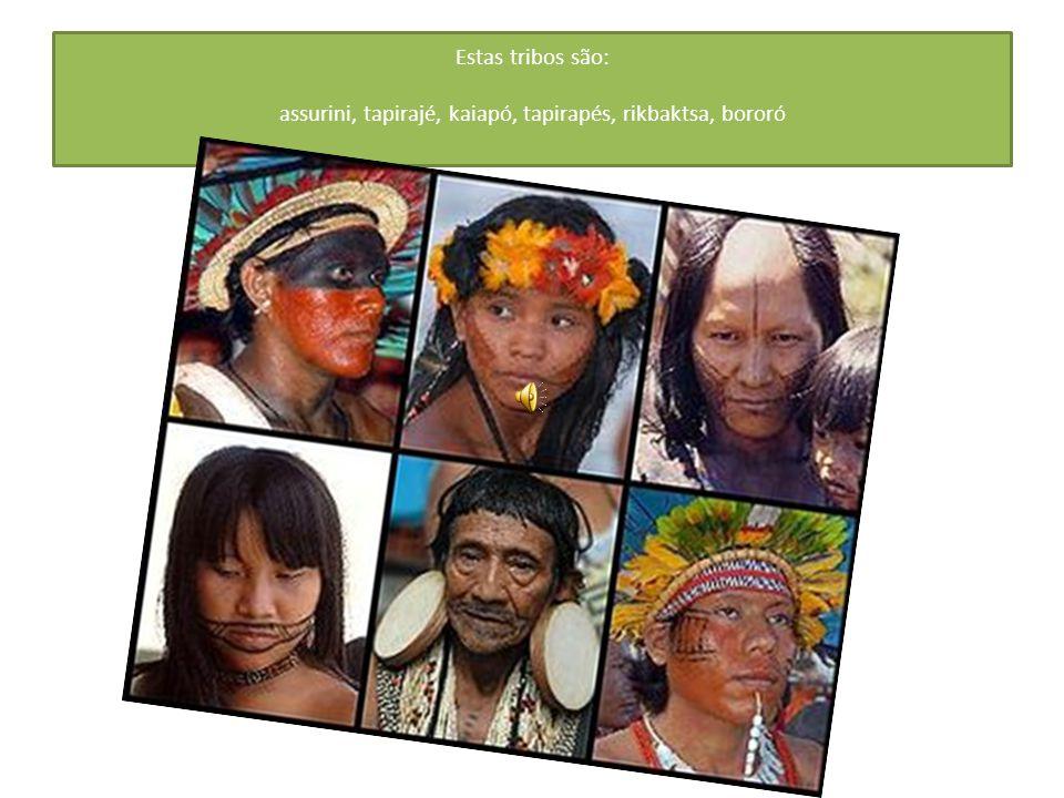 Estas tribos são: assurini, tapirajé, kaiapó, tapirapés, rikbaktsa, bororó