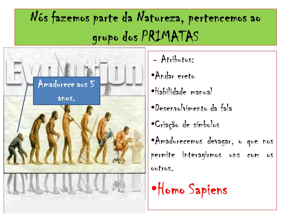 Nós fazemos parte da Natureza, pertencemos ao grupo dos PRIMATAS - Atributos: Andar ereto Habilidade manual Desenvolvimento da fala Criação de símbolo