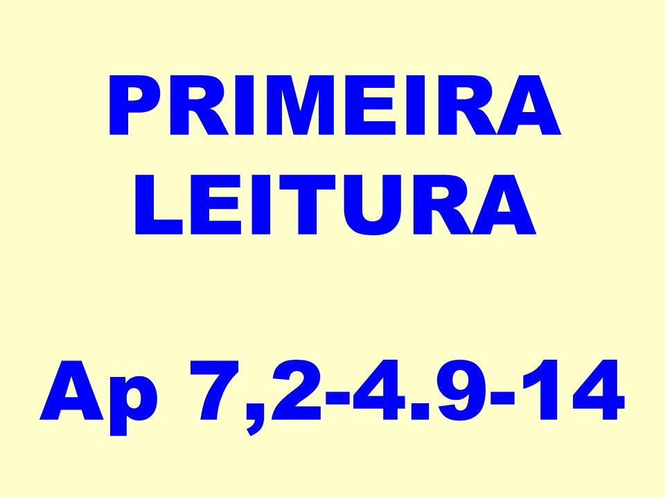 PRIMEIRA LEITURA Ap 7,2-4.9-14