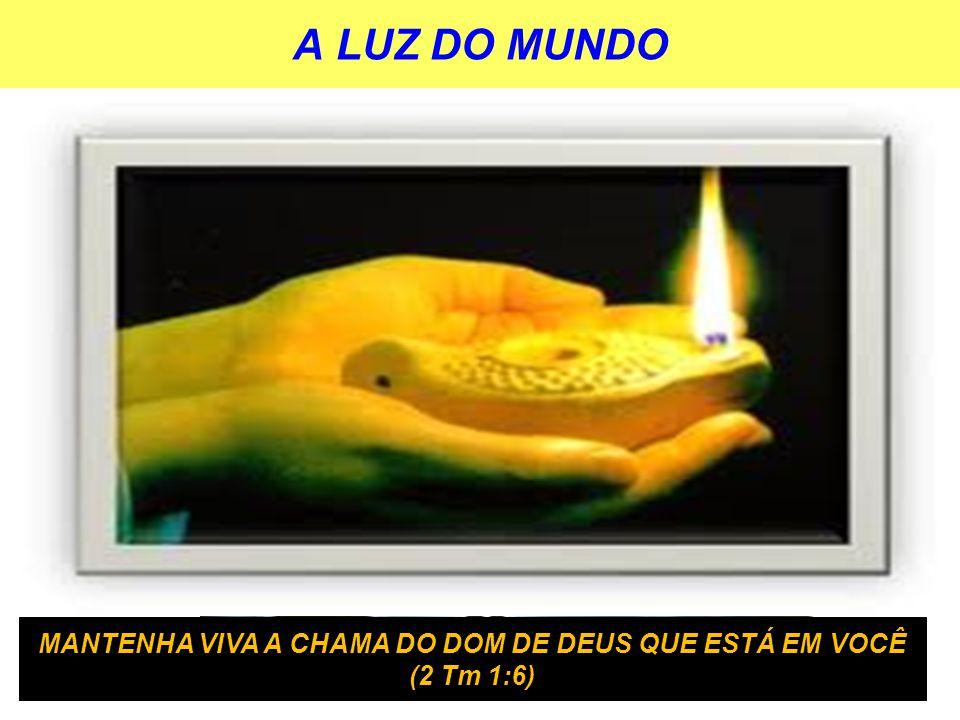 A LUZ DO MUNDO JESUS É A LUZ DO MUNDO A BÍBLIA É LUZ PARA O MEU CAMINHO O CRISTÃO É A LUZ DO MUNDO MANTENHA VIVA A CHAMA DO DOM DE DEUS QUE ESTÁ EM VO
