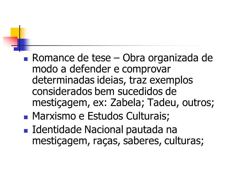 Romance de tese – Obra organizada de modo a defender e comprovar determinadas ideias, traz exemplos considerados bem sucedidos de mestiçagem, ex: Zabe