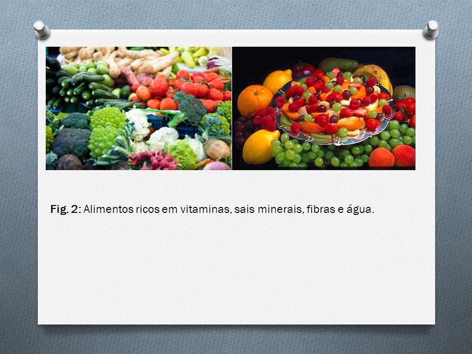 Fig. 2: Alimentos ricos em vitaminas, sais minerais, fibras e água.