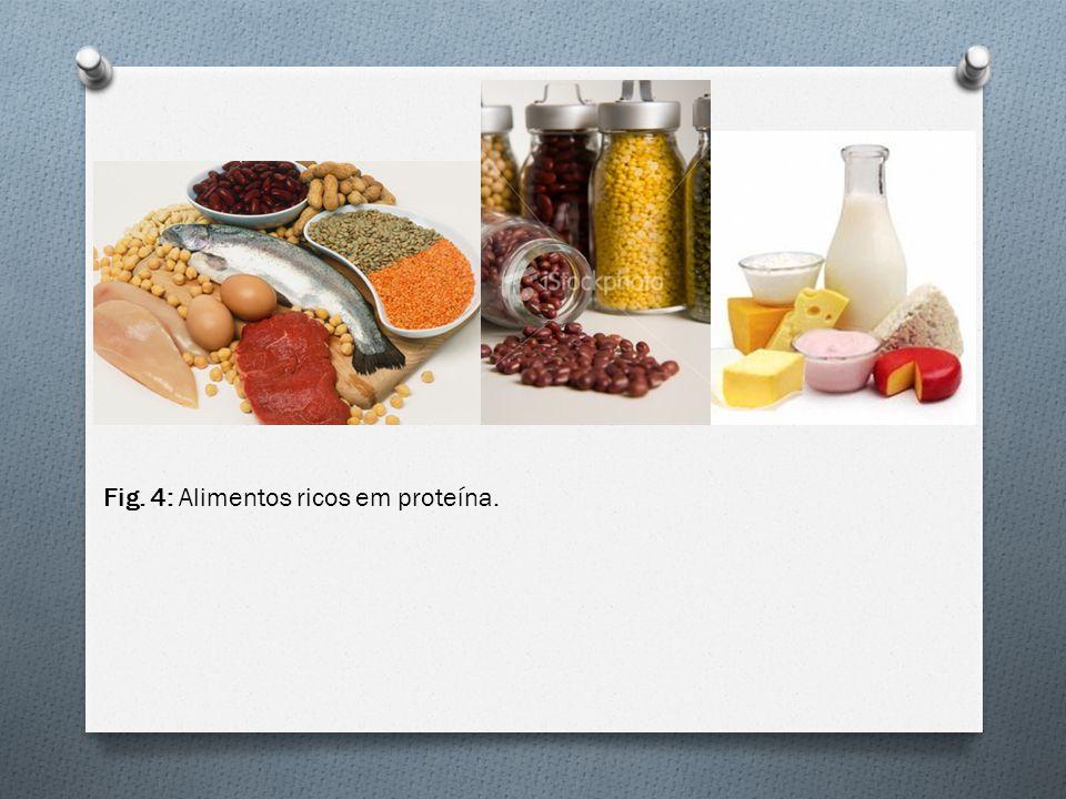 Fig. 4: Alimentos ricos em proteína.