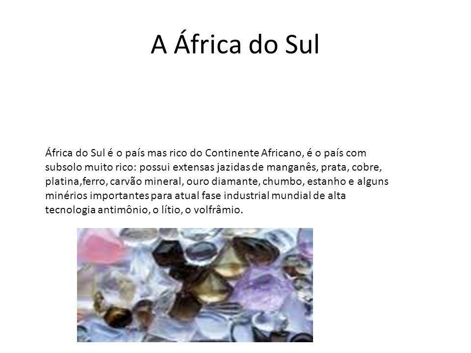A África do Sul África do Sul é o país mas rico do Continente Africano, é o país com subsolo muito rico: possui extensas jazidas de manganês, prata, c