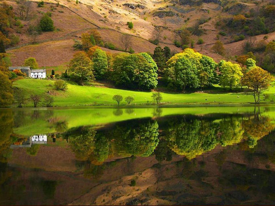 Recebi da amiga Paula Grossi um PPS intitulado WORDL- REFLECTION Nº 1, contendo belíssimas imagens da Natureza, verdadeiras Obras Divinas. No repasse