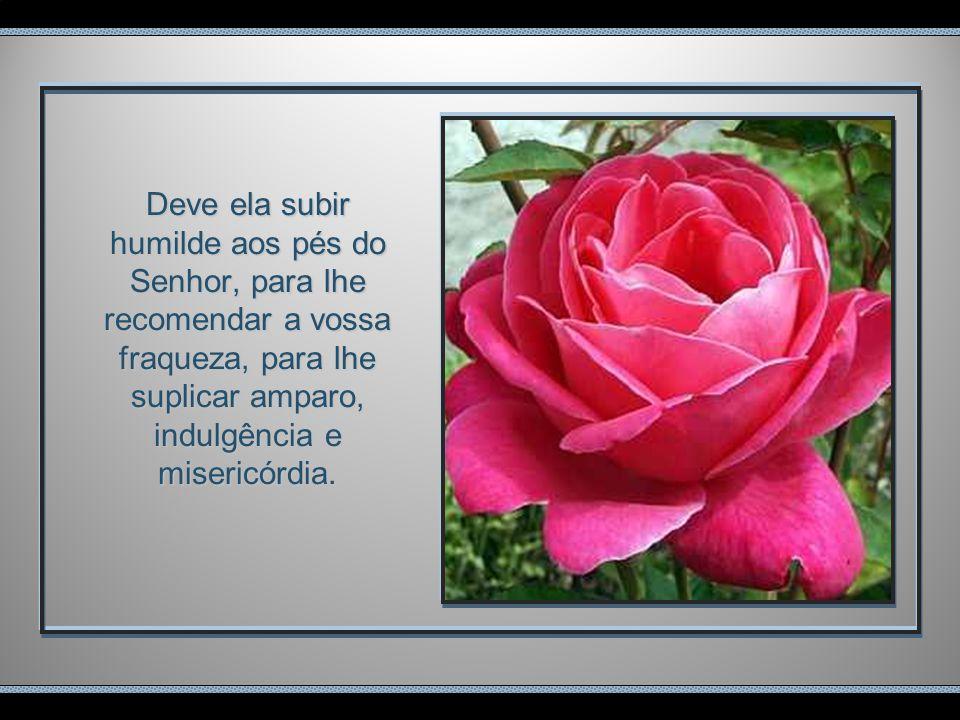 A prece ao ser proferida deve elevar- se aos pés da majestade divina com humildade, com profundeza, num ímpeto de reconhecimento por todos os benefíci