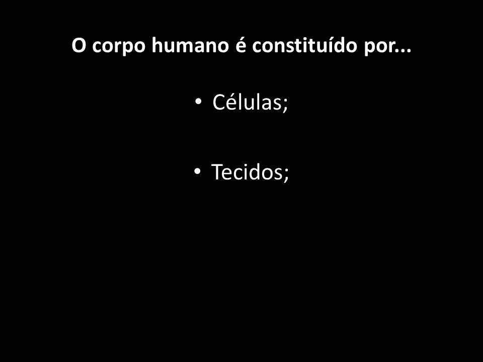 Células; Tecidos; Órgãos e O corpo humano é constituído por...
