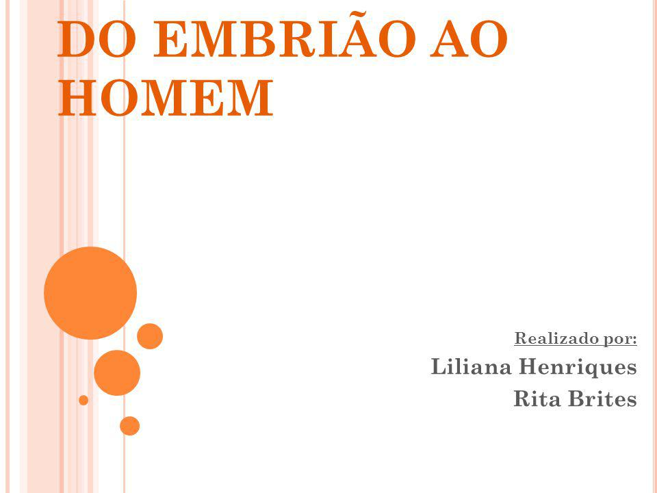 DO EMBRIÃO AO HOMEM Realizado por: Liliana Henriques Rita Brites