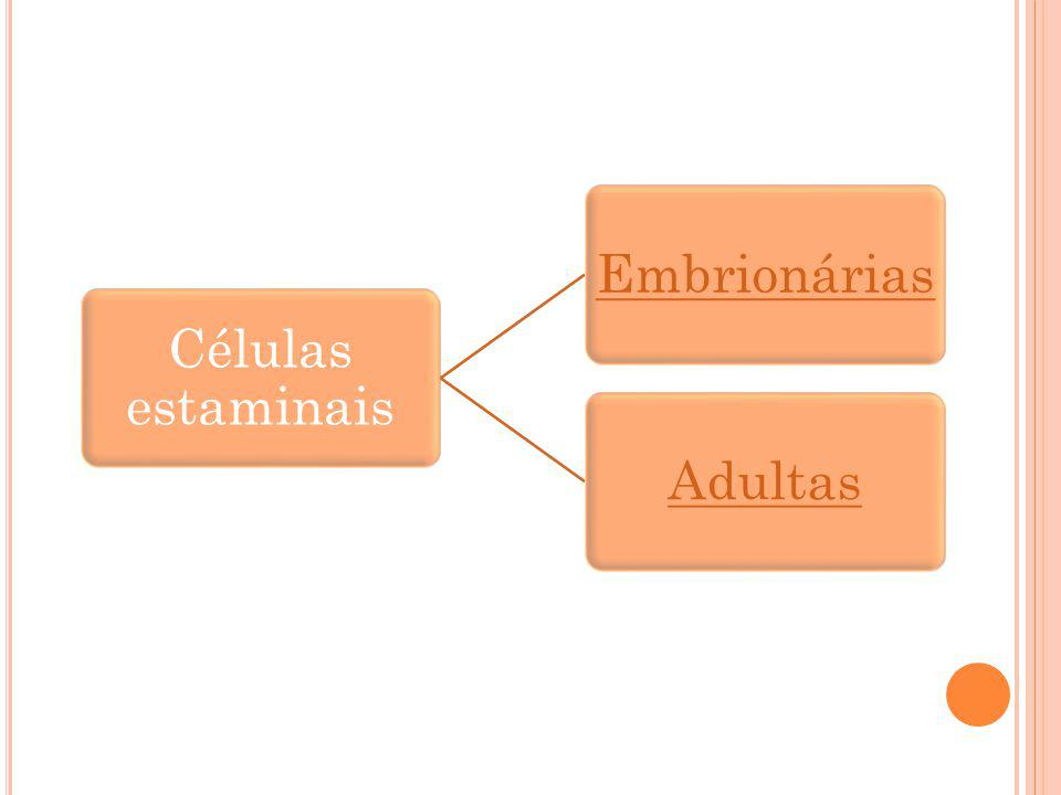 Células estaminais EmbrionáriasAdultas