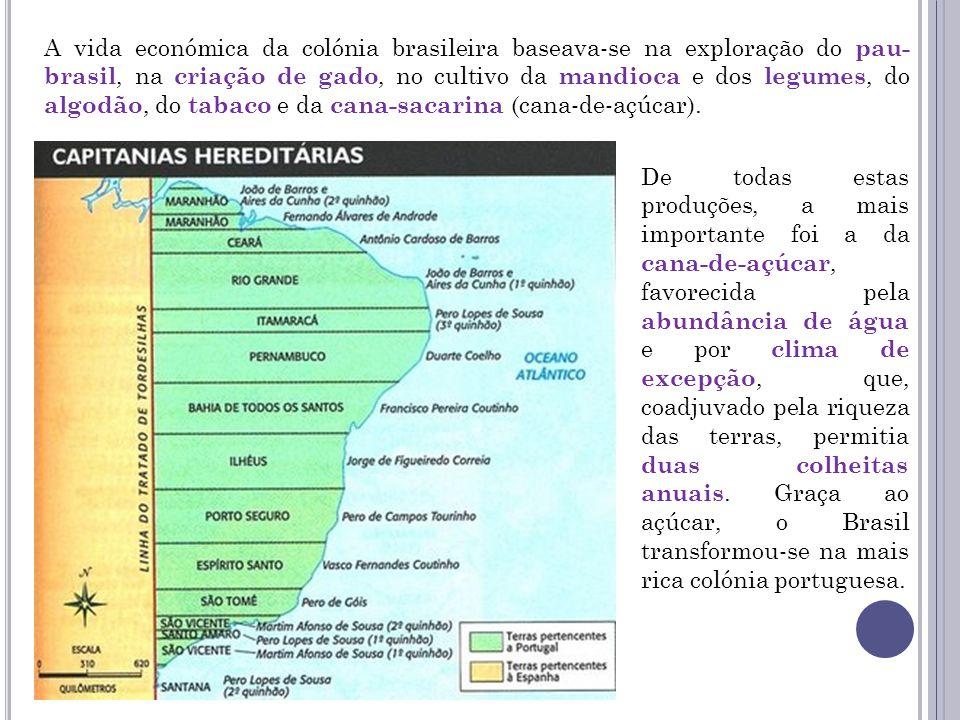 A vida económica da colónia brasileira baseava-se na exploração do pau- brasil, na criação de gado, no cultivo da mandioca e dos legumes, do algodão,