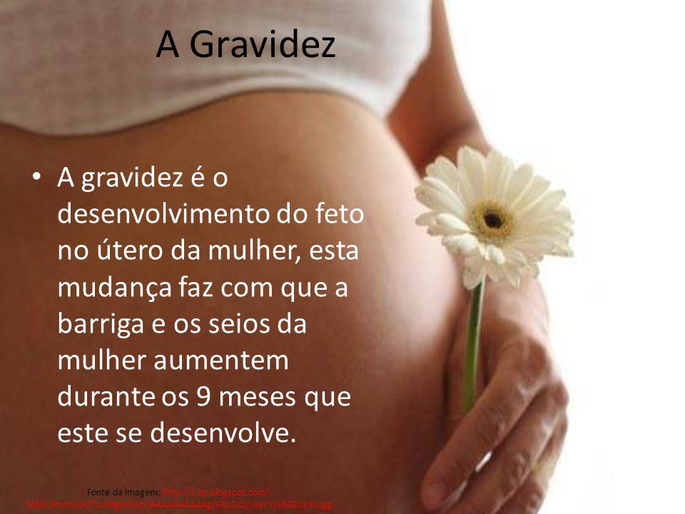 A Gravidez A gravidez é o desenvolvimento do feto no útero da mulher, esta mudança faz com que a barriga e os seios da mulher aumentem durante os 9 meses que este se desenvolve.