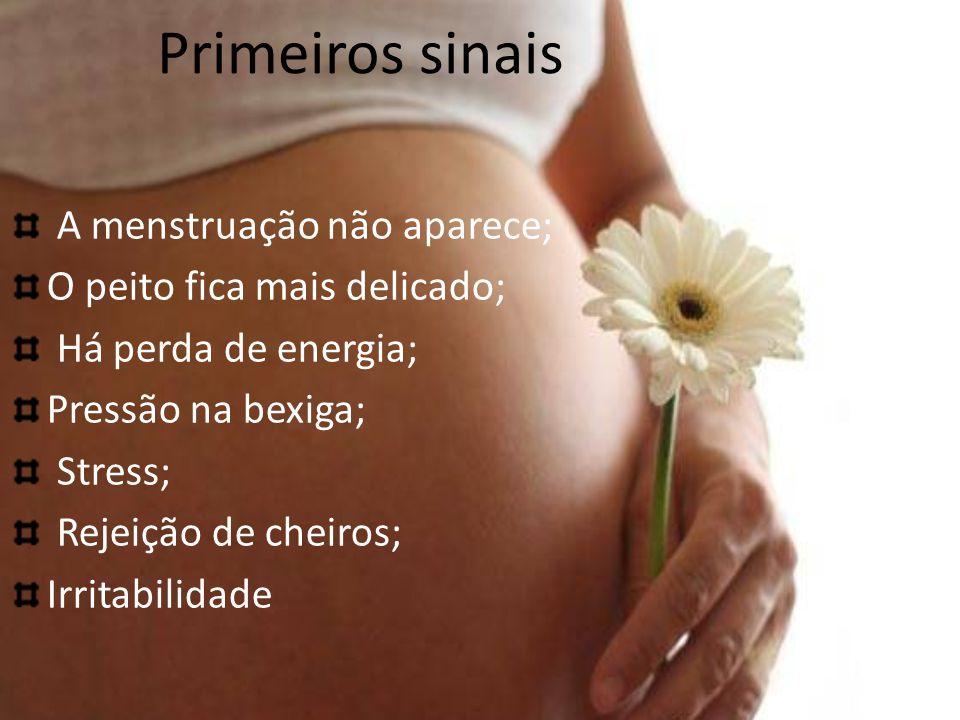 Primeiros sinais A menstruação não aparece; O peito fica mais delicado; Há perda de energia; Pressão na bexiga; Stress; Rejeição de cheiros; Irritabilidade