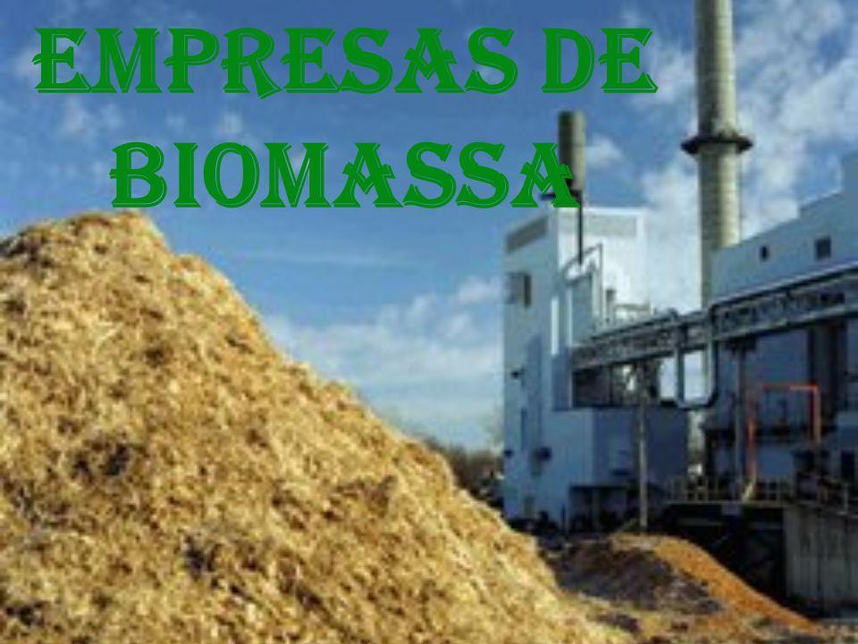 O que é a biomassa.