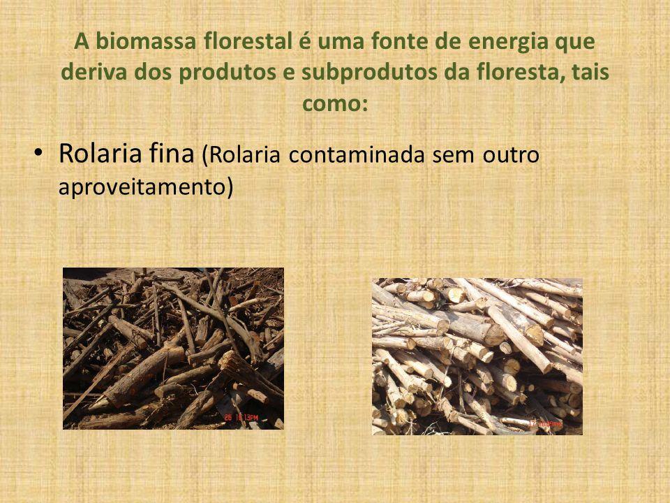 A biomassa florestal é uma fonte de energia que deriva dos produtos e subprodutos da floresta, tais como: Rolaria fina (Rolaria contaminada sem outro