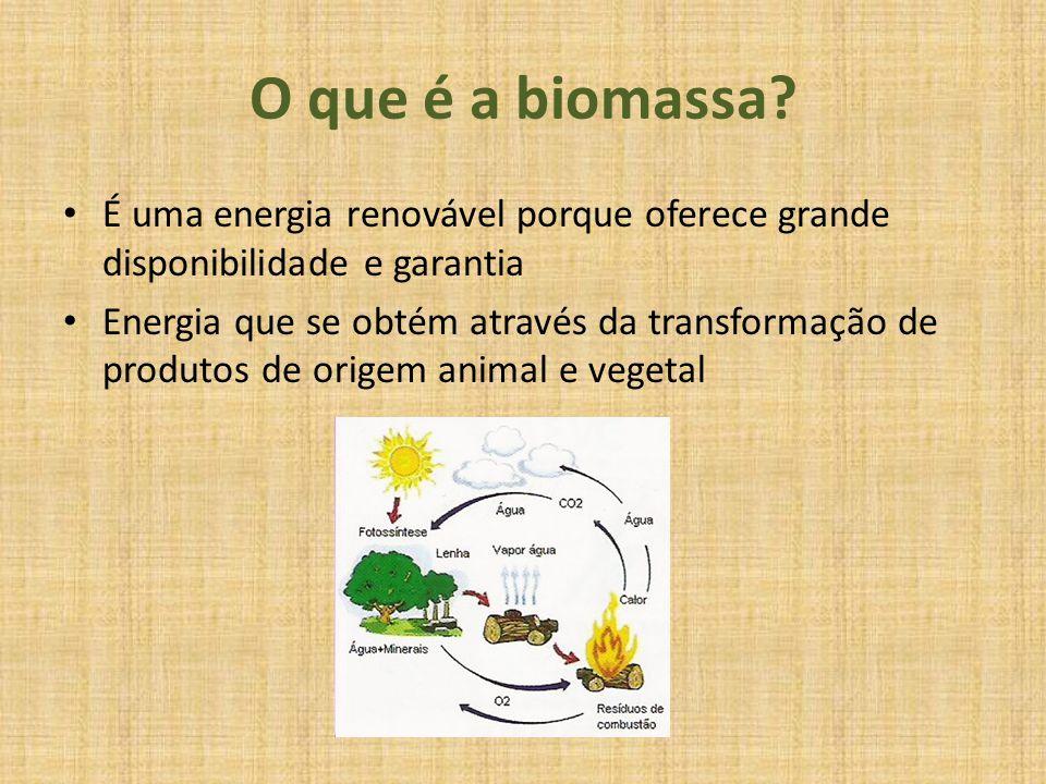 O que é a biomassa? É uma energia renovável porque oferece grande disponibilidade e garantia Energia que se obtém através da transformação de produtos