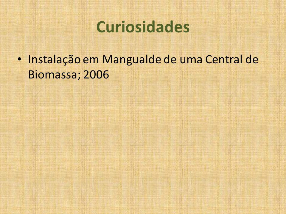 Curiosidades Instalação em Mangualde de uma Central de Biomassa; 2006