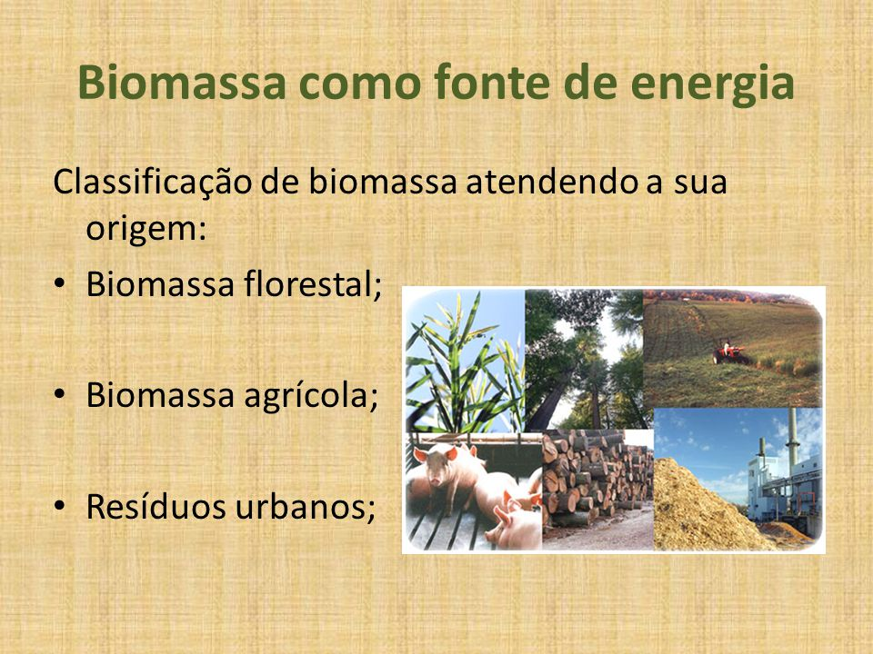 Biomassa como fonte de energia Classificação de biomassa atendendo a sua origem: Biomassa florestal; Biomassa agrícola; Resíduos urbanos;