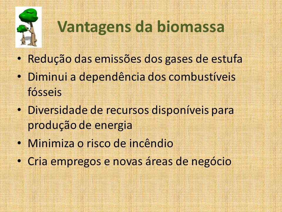 Desvantagens da biomassa A combustão da biomassa dá origem à emissão de alguns gases Os impactos ambientais negativos, como a compactação dos solos, erosão, perda de nutrientes no solo, entre outros As características e dimensões da floresta podem conduzir a custos elevados Uso alternativo mais interessante de matéria prima, podem limitar o uso como combustível