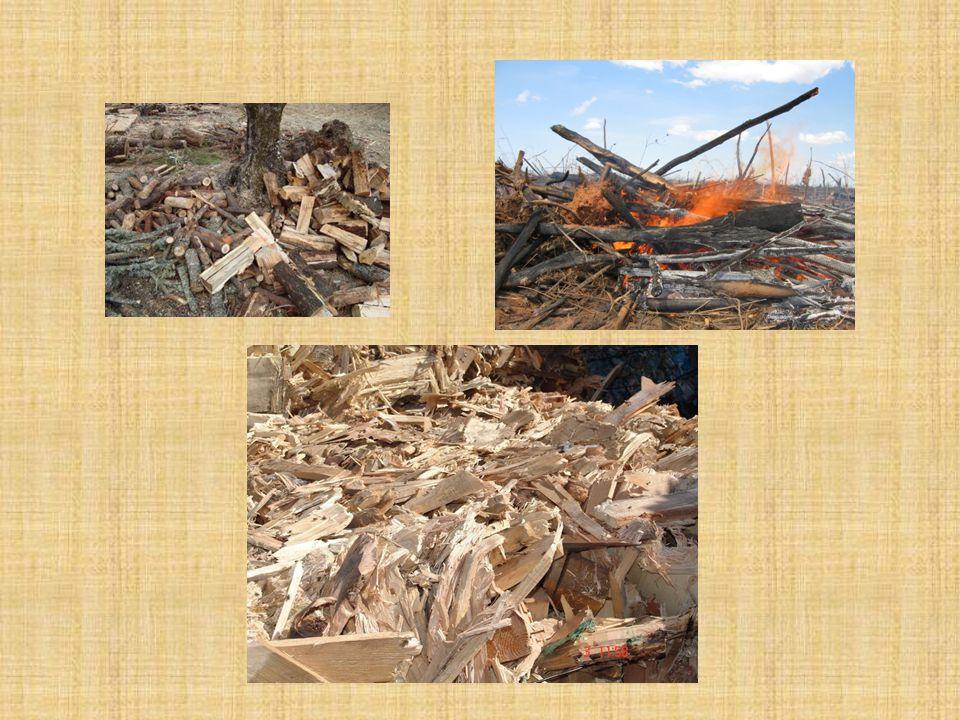 Objectivo da biomassa Utilização directa: – Neste processo utiliza-se a queima directa em que estes resíduos geram calor que pode ser utilizado tanto para o aquecimento doméstico como para processos industriais.