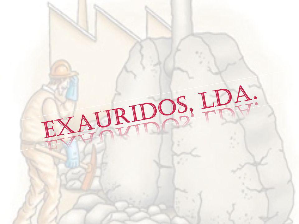 Exauridos, LDA Nesta firma efectuamos a remoção fibrocimento.