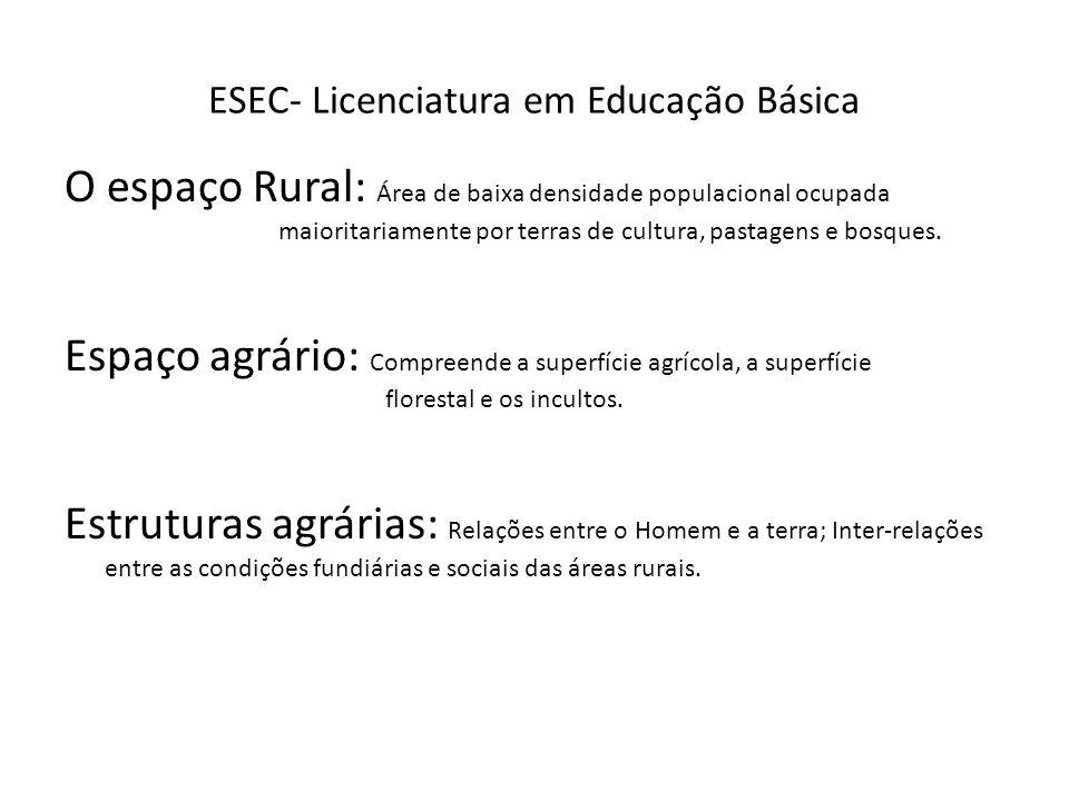 ESEC- Licenciatura em Educação Básica O espaço Rural: Área de baixa densidade populacional ocupada maioritariamente por terras de cultura, pastagens e