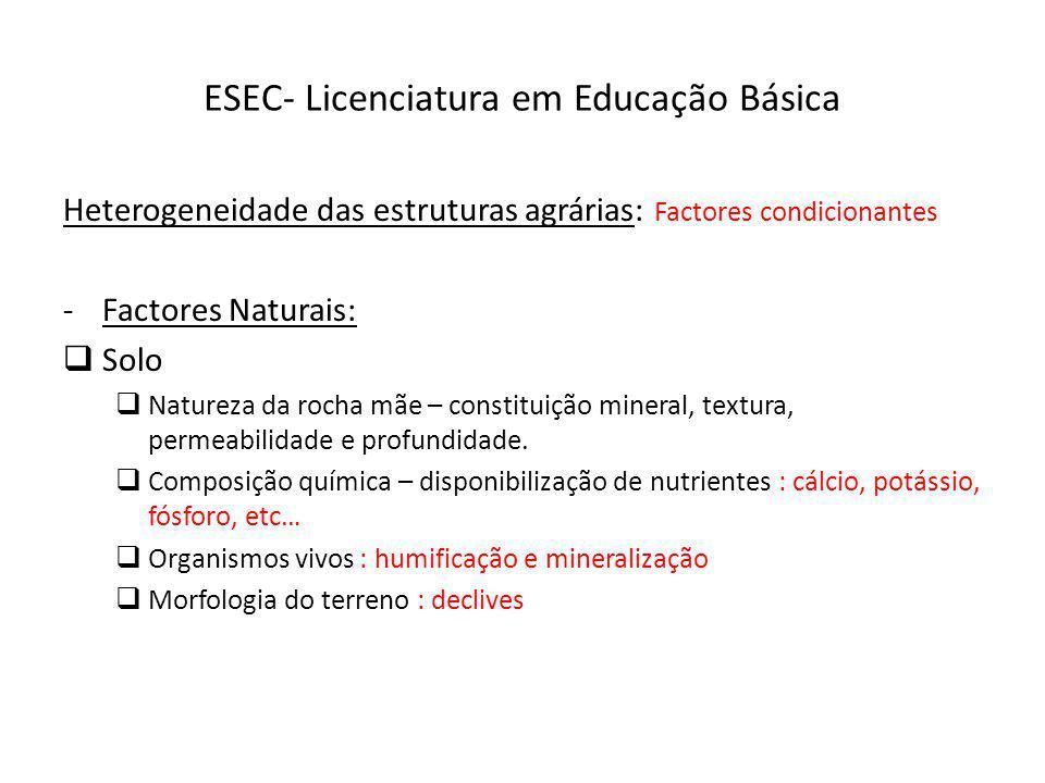 ESEC- Licenciatura em Educação Básica Heterogeneidade das estruturas agrárias: Factores condicionantes -Factores Naturais: Solo Natureza da rocha mãe