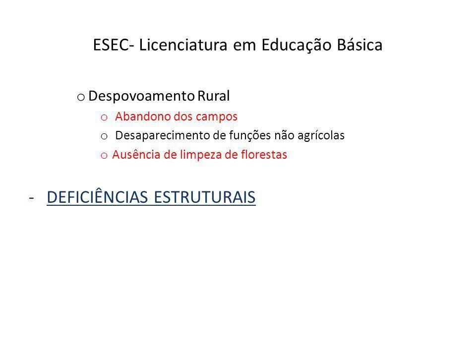 ESEC- Licenciatura em Educação Básica o Despovoamento Rural o Abandono dos campos o Desaparecimento de funções não agrícolas o Ausência de limpeza de