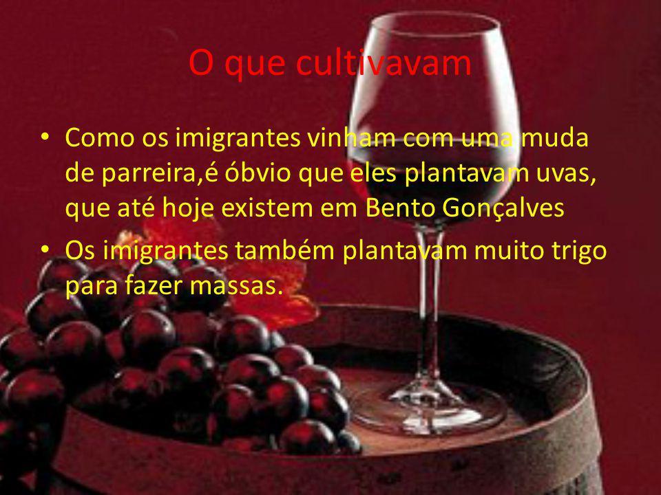 O que cultivavam Como os imigrantes vinham com uma muda de parreira,é óbvio que eles plantavam uvas, que até hoje existem em Bento Gonçalves Os imigra
