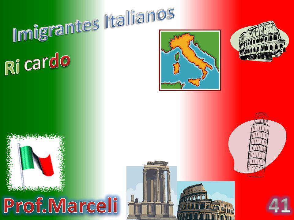 Os Italianos vieram para o Brasil por muitos motivos,um deles foi porque apareceu uma doença chamada pelagra que infectou toda a Europa, e foi por isso que eles vierem pra cá.
