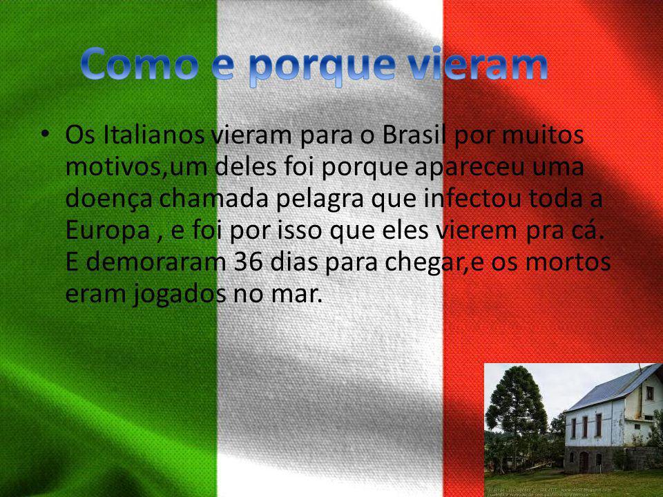 Os Italianos vieram para o Brasil por muitos motivos,um deles foi porque apareceu uma doença chamada pelagra que infectou toda a Europa, e foi por iss
